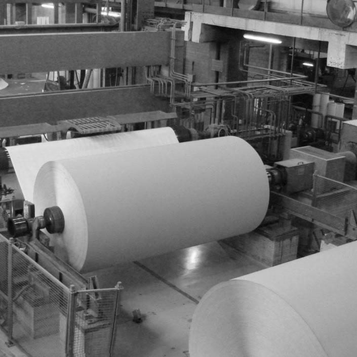Pulp & Paper - Grupo Sicelub Lubritech